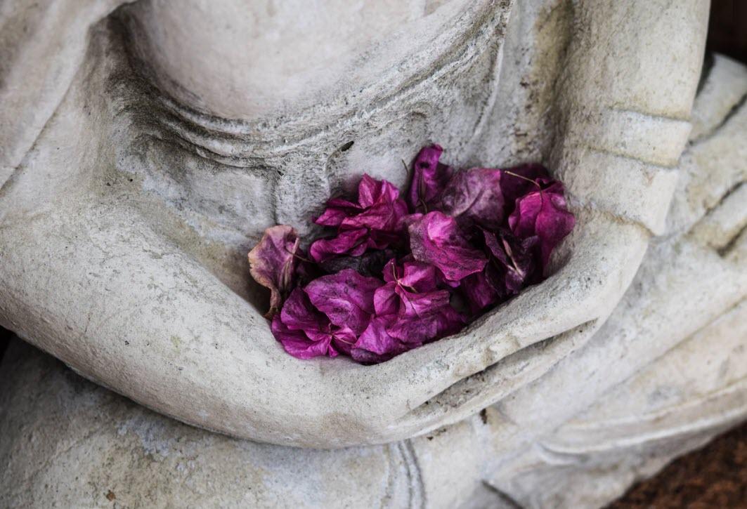 buddha 8